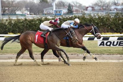 horse-racing-aqueduct2_50