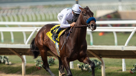 Early Odds to Win the 2021 Kentucky Derby: Life is Good for Value Hunters