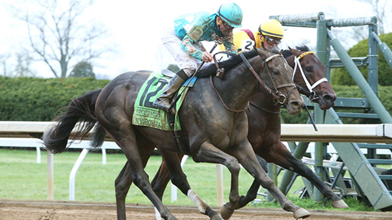 2021 Kentucky Derby Betting: Increase Value, Fade the Hunch