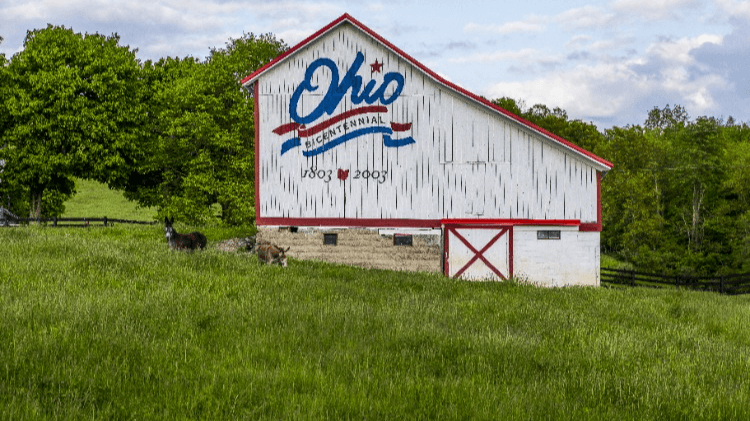 Sports Betting Roundup: Ohio moves closer; New Jersey dominates, and more