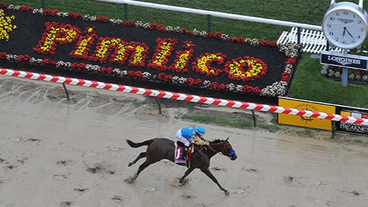 Preakness 2021 Betting Guide & Picks: Strategies for All Budgets
