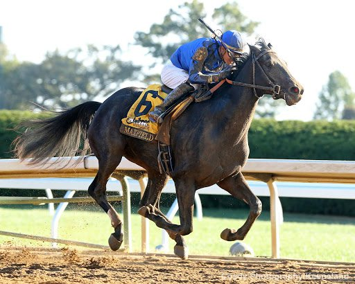 Churchill Downs: Selections and Analysis for Closing Day